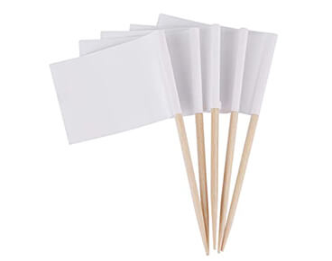 Custom DIY Toothpick Flags