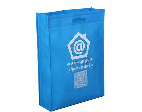 standing tote non woven bags manufacturer